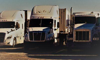 Dignificar al operador de autotransporte - PosdataMx